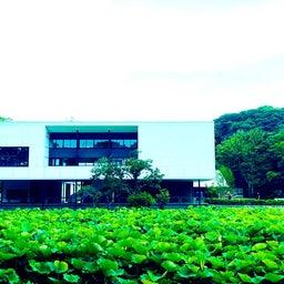 画像 鎌倉美容室URUMA当日のご予約状況はこちら の記事より