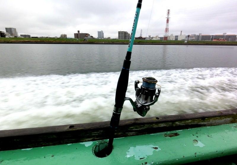 東京 湾 タコ 釣り