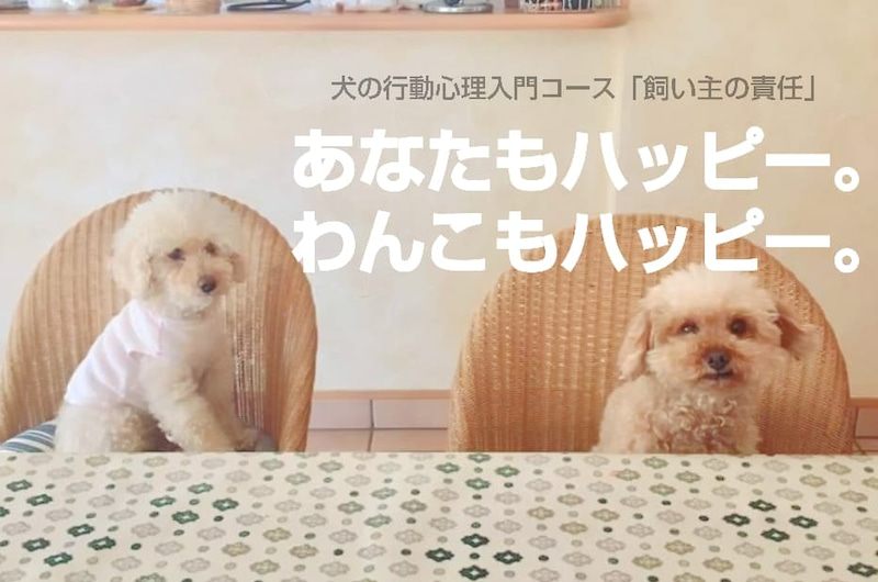 愛犬もあなたも幸せになる 犬の行動心理入門コース 飼い主の責任