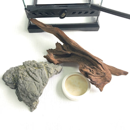 画像 中古品 爬虫類 ケージセット¥5,400-円税込 の記事より 2つ目