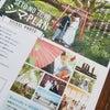 SETO NO 花嫁 シマ PLANの画像