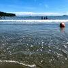 【貝澳】貝澳ビーチ プイオービーチで潮干狩り 海水浴を楽しもうの画像