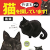 やまとくん、2日ぶりに無事帰宅!【東京都】【黒猫】【男の子】【首輪なし】【雨の日】の画像