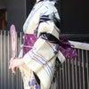 夏は着物は暑い?!【かんたん着付け教室15分/西東京/山梨】の画像