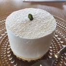 カフェ<いろはビレッジ> 美しいケーキ 猫 乳がん 温泉 温泉タオルン プリンセスのんの  の記事より