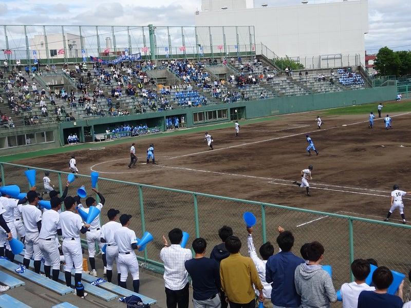 高校 札幌 国際 部 情報 野球