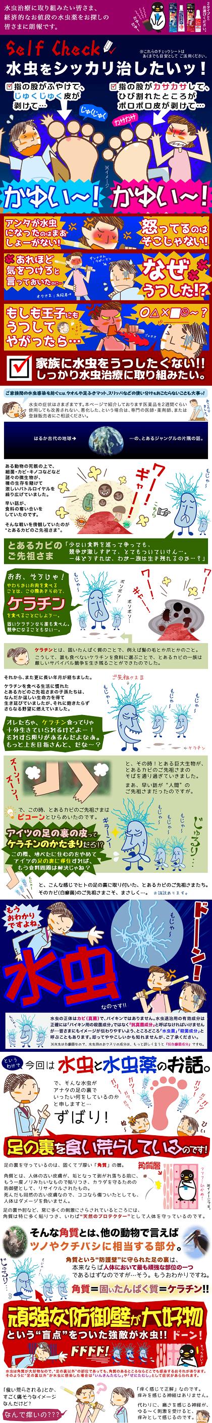 ビタトレール・ヒフールの説明画像②