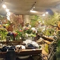 画像 急坂の途中のお花屋さん「小路苑(kojien)」の店内を覗きました の記事より 1つ目