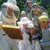 2019年 はちみつ蔵養蜂講座のお知らせ  その1の画像