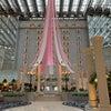 龍馬プロジェクト10周年記念パーティーの画像