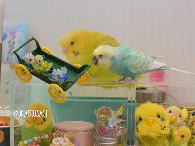 Ikura with beaded birds