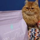 通販キャットフードはホントに猫に人気なのか??の記事より