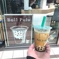 Bull Pulu