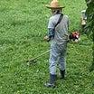 7月15日 草刈りにシャンプーと、、、、
