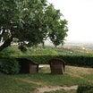 Italy day4 ヴェローナ。イタリアのアグリツーリズモの宿に到着。