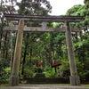 益救神社(原地区)~屋久島ライトワークの旅日記~の画像