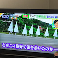TVの群馬!!に反応!!