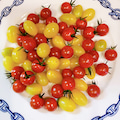 白金台で美味しいトマト発見