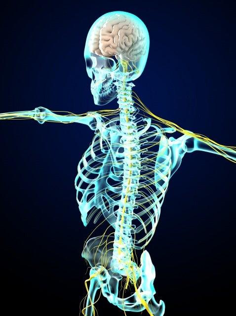 あなたはどのタイプ?リケジョが教える自律神経を整える方法の記事より