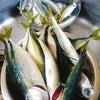 夏の魚( *´艸`)の画像