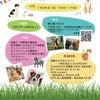 大阪イベントのお知らせの画像