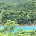 真湯温泉とブナの森