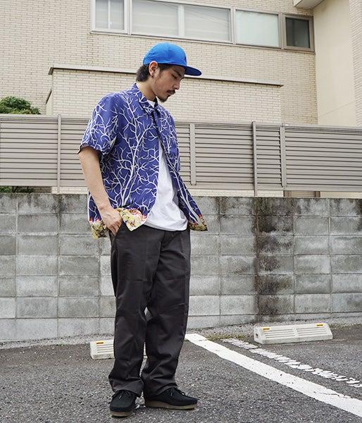 3-ark-hirayama