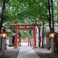椿組夏・花園神社野外劇「芙蓉咲く路地のサーガ」-熊野にありし男の物語ー、観に行く!