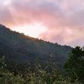 霧ケ峰湿原、、、辺り、、、②