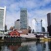ボストン2日目!ハーバード大学!ロブスターボストン美術館✨