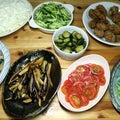 自家栽培ナスの揚げ浸し、ミディトマトとオクラ・キュウリのサラダ、八幡浜近海産サバのギョロッケほか
