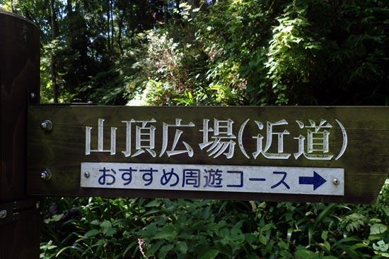長谷堂城【8】