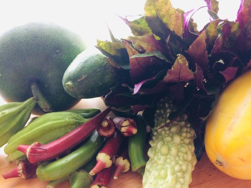 ネバネバ 野菜