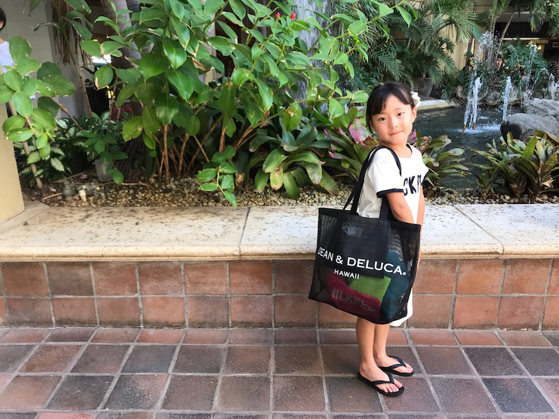 Deen Deluca Hawaii のトートバッグ 江原千鶴オフィシャルブログ チヅルのしょーもないひとりごと Powered By Ameba