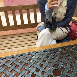 画像 暑い北海道とゴン太さん の記事より 5つ目