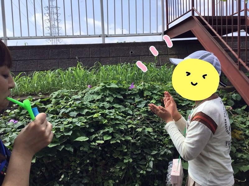 o1080080914518045988 - ●7月30日(火) ●toiro大倉山