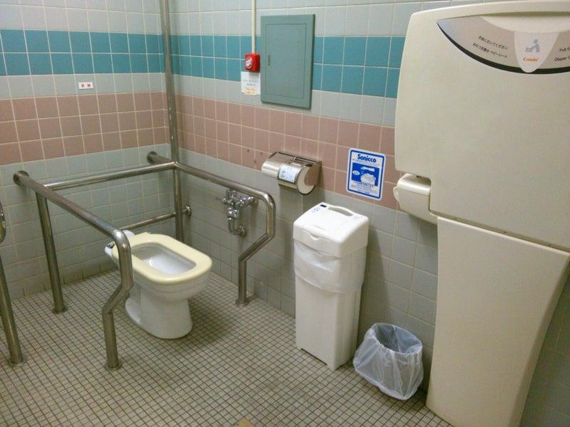 トイレ 改名 多目的
