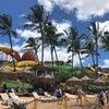 ハワイより夏のご挨拶の画像
