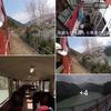 美しい日本『大井川鉄道』お薦めの旅路です ❣の画像