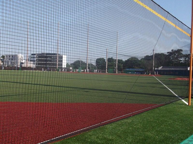 駒沢 大学 野球 部
