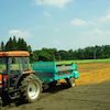 2019堆肥撒き シャンピニオン・ド・パリ堆肥と酒粕堆肥の画像