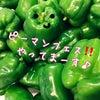 【おかずレシピ】ピーマン大量消費レシピ5種の画像