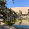 ペルー、自分史上最も過酷だった旅! 砂漠の街イカと旅の終わりの画像