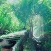 宙と大地をつなぐ三人の音姫     豊前シンギングリン音浴会の画像