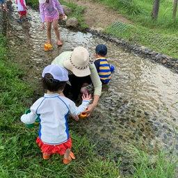 画像 水遊びができる公園@JR八尾 の記事より 3つ目