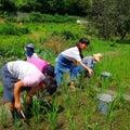 自然 農教室!!