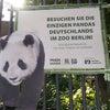 動物も人間も居心地のよいベルリン動物園の画像
