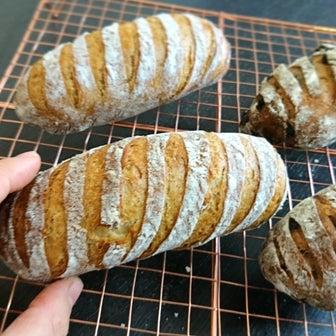 セーグルは、何より「種」が大事です「パン・オ・セーグル」ライ麦ハードパン