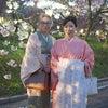 造幣局「花のまわりみち」夜桜 & サックスを聞きながらお花見弁当2019の画像