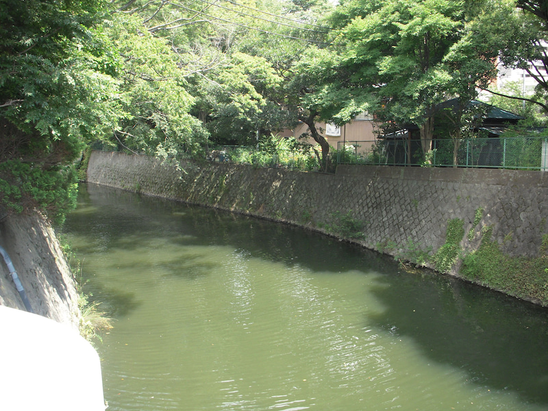 2019/8/11 坂川釣行 | AKIRAの江...